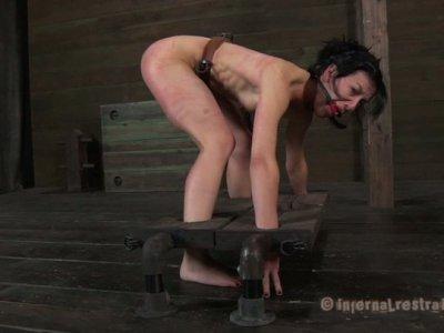 Utmost BDSM session of brunette slut Elise Graves