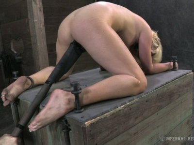 Curvy blonde babe Courtney Taylor poked with sledge-hammer