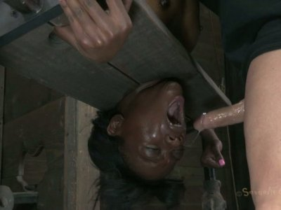 Ebony hussy Ana Foxxx blowjobs upside down in BDSM sex video
